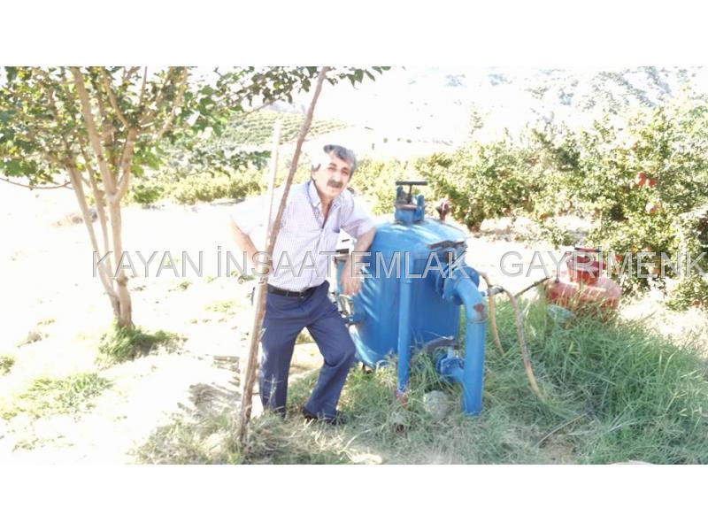 yatırımlık tarla 120 dönüm nar bahcesi hayvancılık arazi satılık