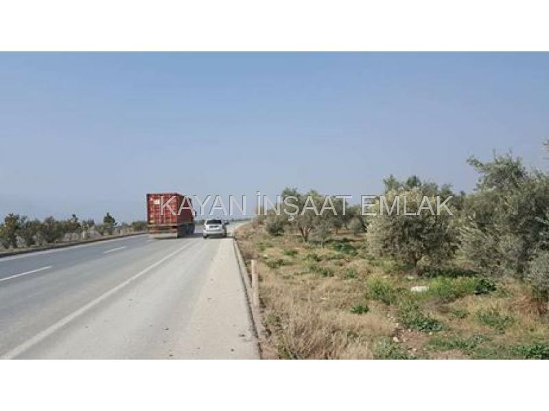 satılık  arsa izmir asfalt cepeli buharkent yatırımlık